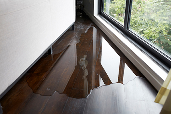 water damage restoration billings mt, water damage billings mt, water damage repair billings mt
